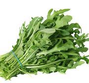 "Ruccola sallat "" Astra"" cirka 500 frön"